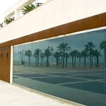 palms-reflection